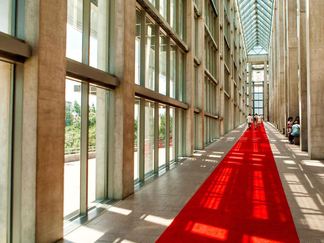 Des visiteurs explorent un long couloir vitré éclairé par le soleil.