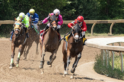Four jockeys racing horses on a dirt track. From the left, one jockey is wearing green, one is wearing blue, one is wearing pink an one is wearing red. The jockey wearing red is slightly in the lead.