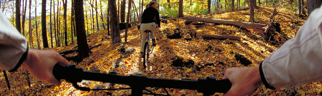 Un cycliste suit une femme dans un sentier en forêt couvert de feuilles mortes.