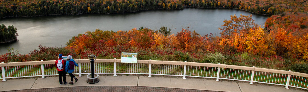 Two people admiring the landscape and fall colours from a raised lookout platform