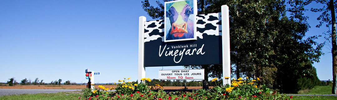 A sign with a colourful cow at the entrance to the Vankleek Hill Vineyard