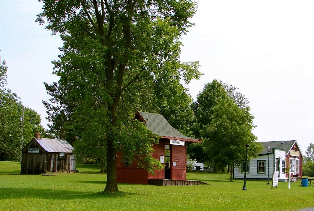 Three heritage buildings are surrounded by green lawn and trees