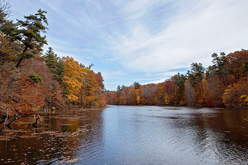A large pond surrounded by a forest during the fall.