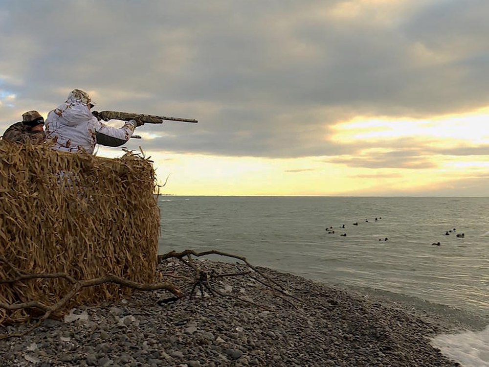 Two men aim at waterfowl in the lake from a hunting blind