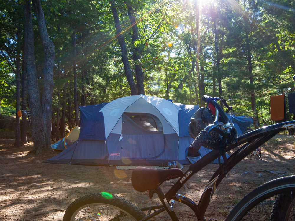 A blue and white tent and bicycle on a camping site surrounded by trees
