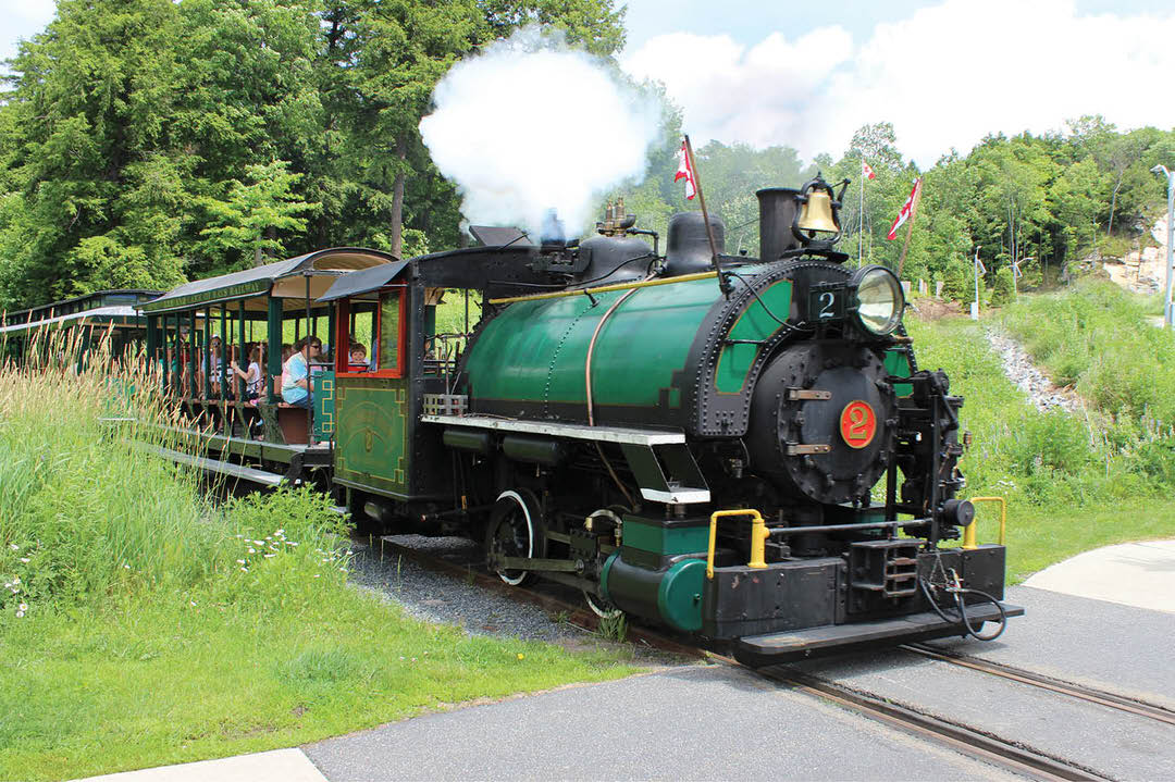 Steam engine on single track with head of steam pulling open cars with tourists emerging from forest onto road crossing