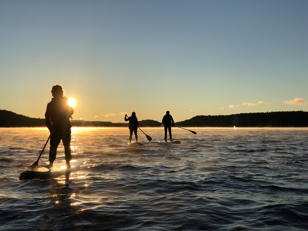 3 darkly-outlined people with each standing on a paddleboard paddling across choppy lake with sun just above forest on far shore