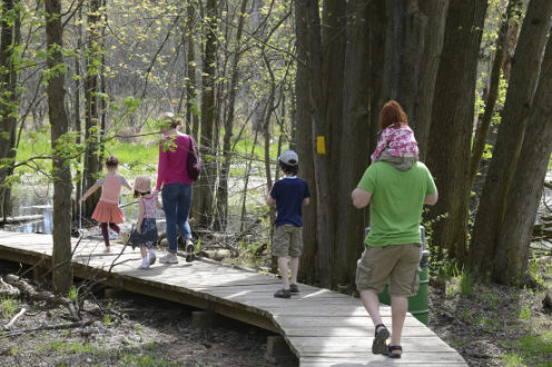 Man and woman and 4 children walking past tree trunks on wooden walkway towards river up ahead