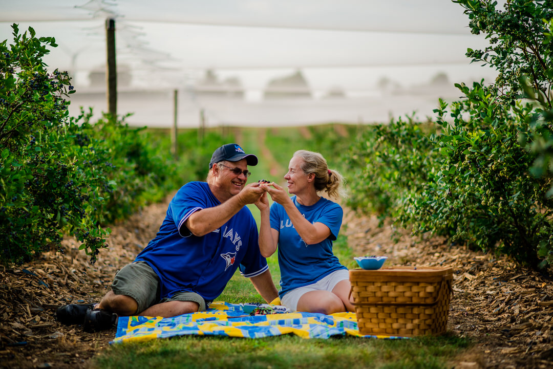 A couple enjoying a picnic in a berry patch