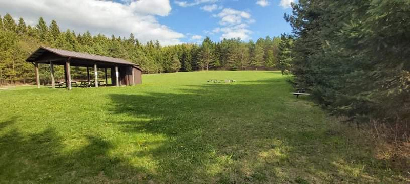 An empty picnic shelter in an open area