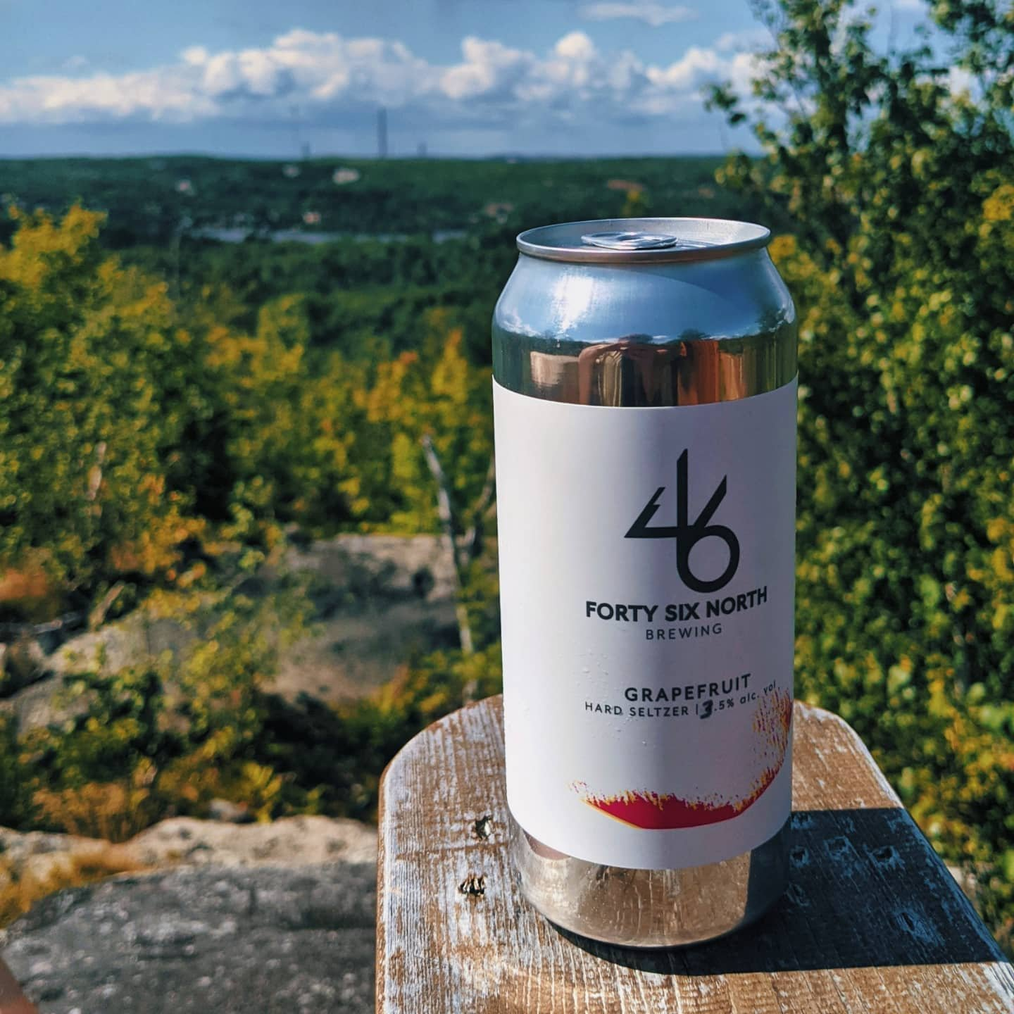 A can of hard seltzer sits on an arm rest with the forest in the background