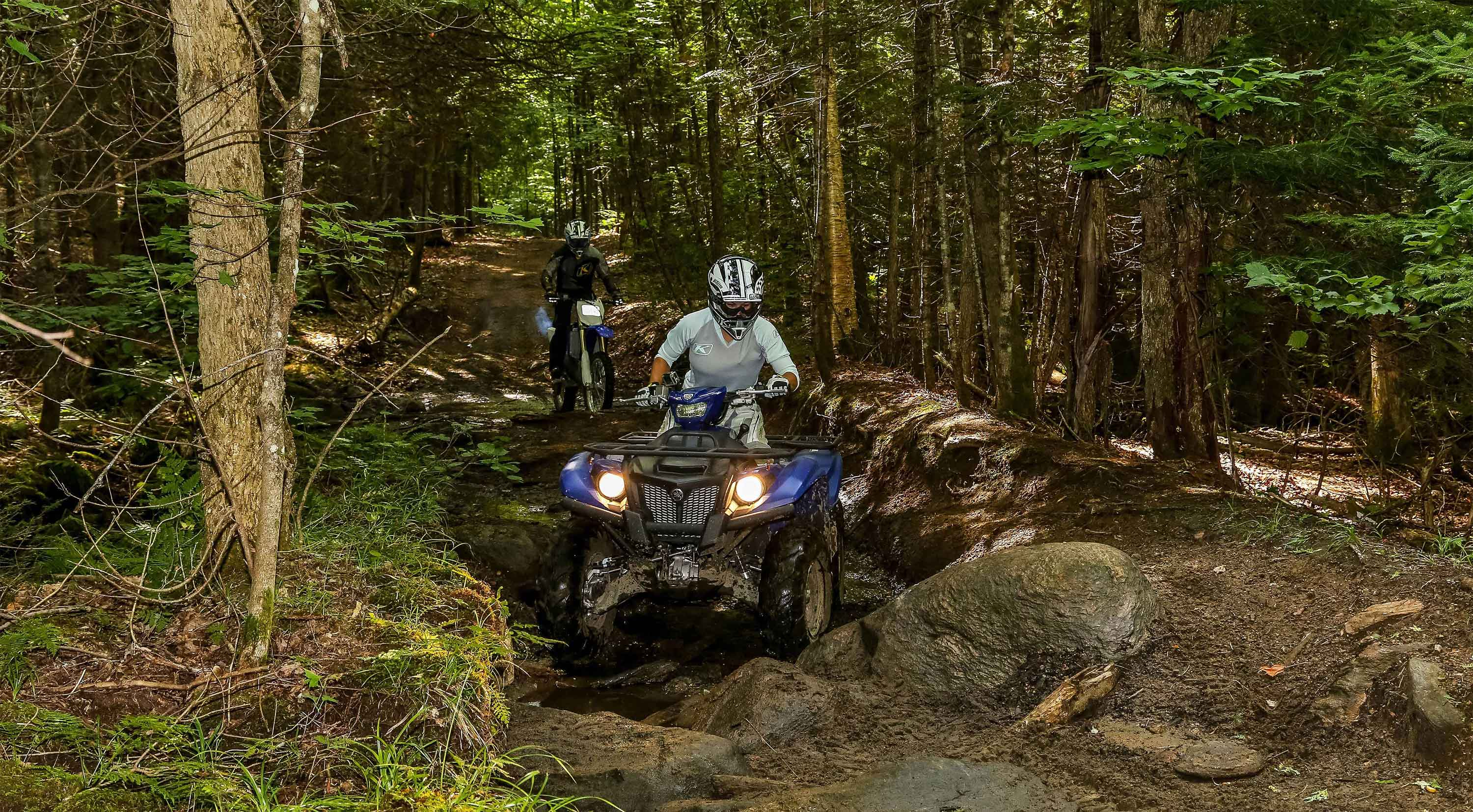 In the forest, a person rides an ATV and another person rides a dirt bike