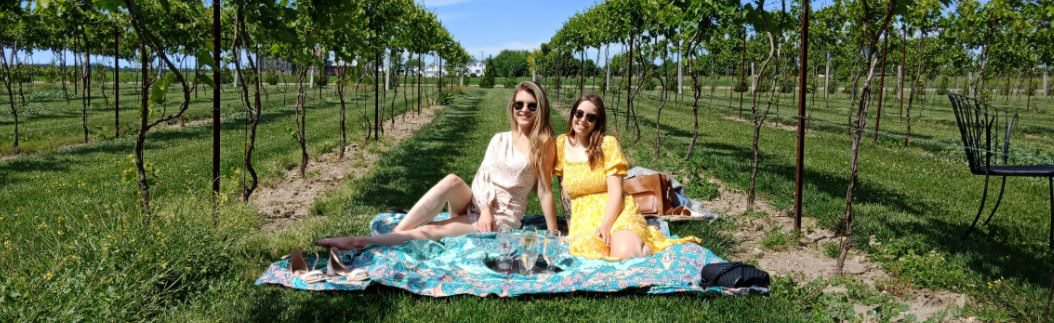 A couple picnicking in the middle of a vineyard.