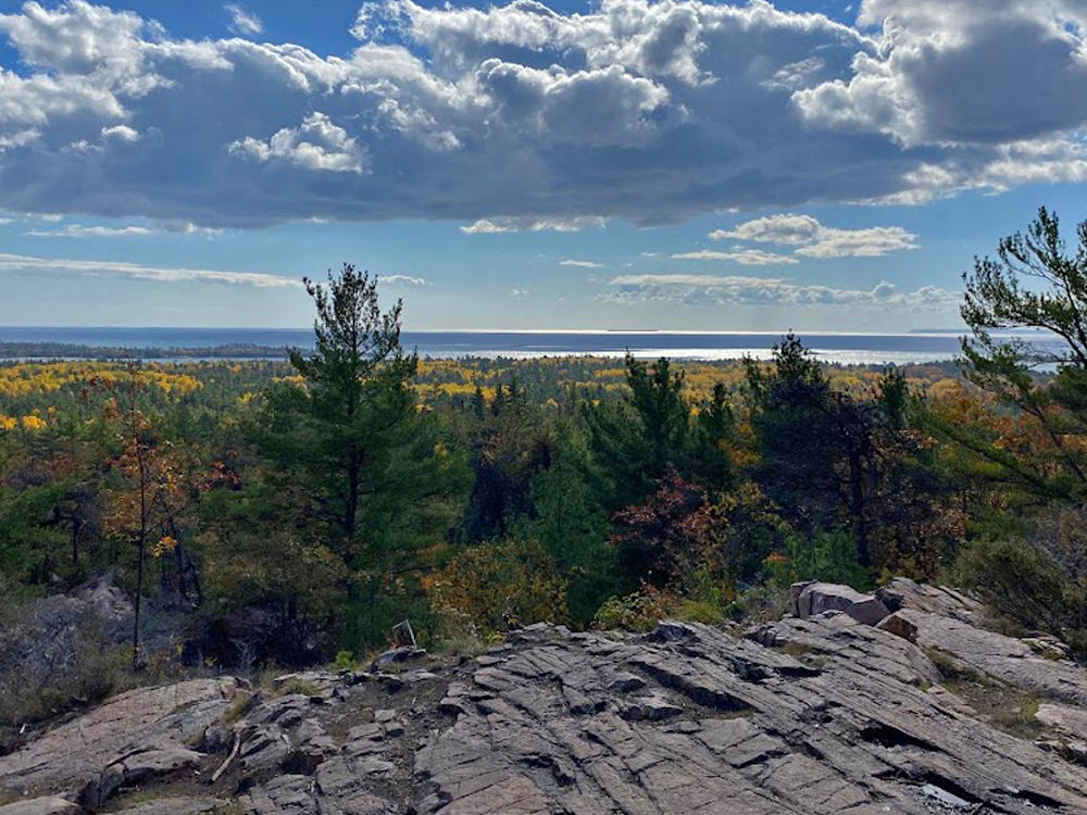 Beautiful view of forest from a rocky lookout