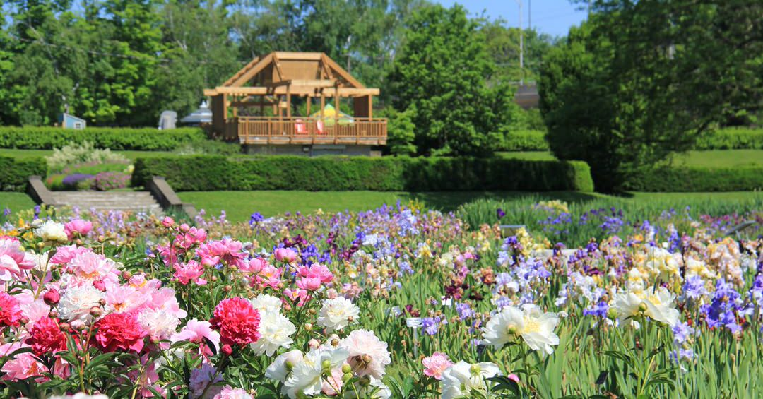 A pergola overlooks vibrant flowers in the luxury gardens.