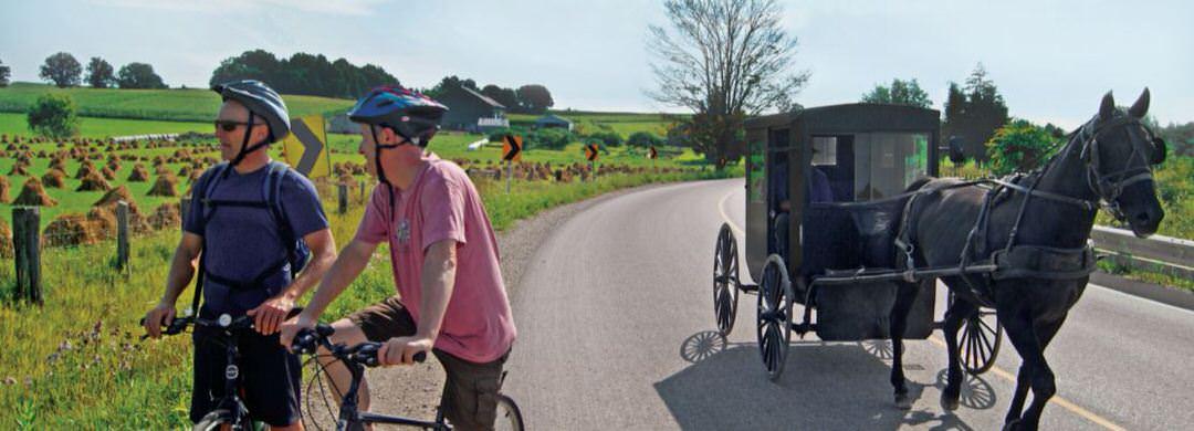 Un homme mennonite conduit son cheval et son buggy sur une route de campagne alors que deux hommes à vélo s'arrêtent sur le bord de la route en admirant le paysage