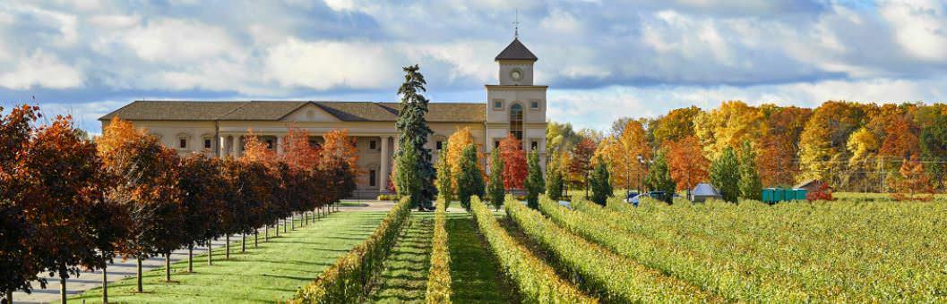 Bordé d'arbres à côté d'un vignoble et derrière la nature se trouve un bâtiment majestueux