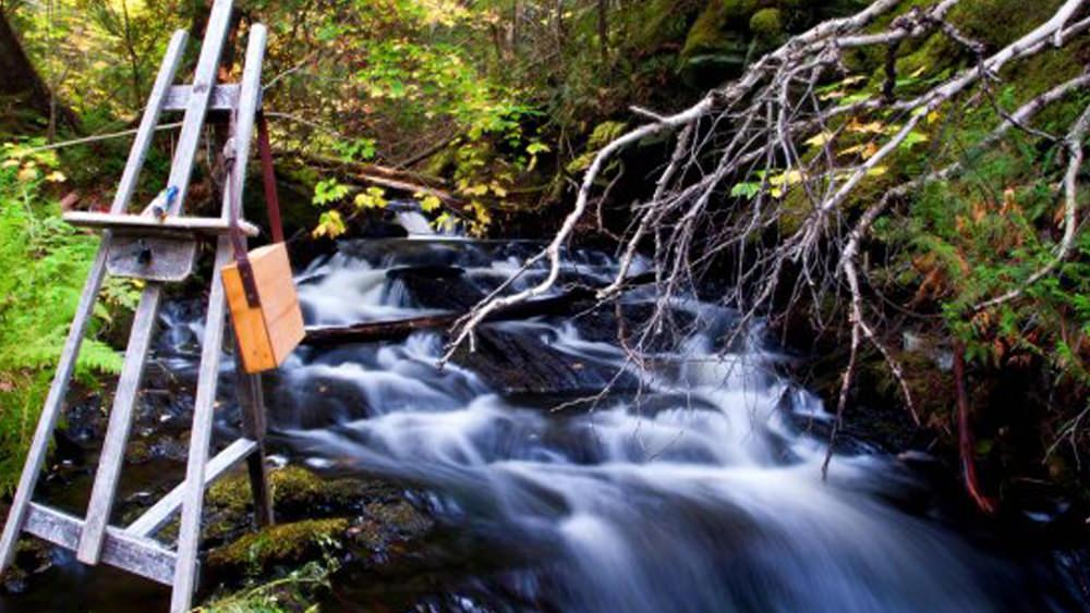 A painting easel set up beside a small waterfall