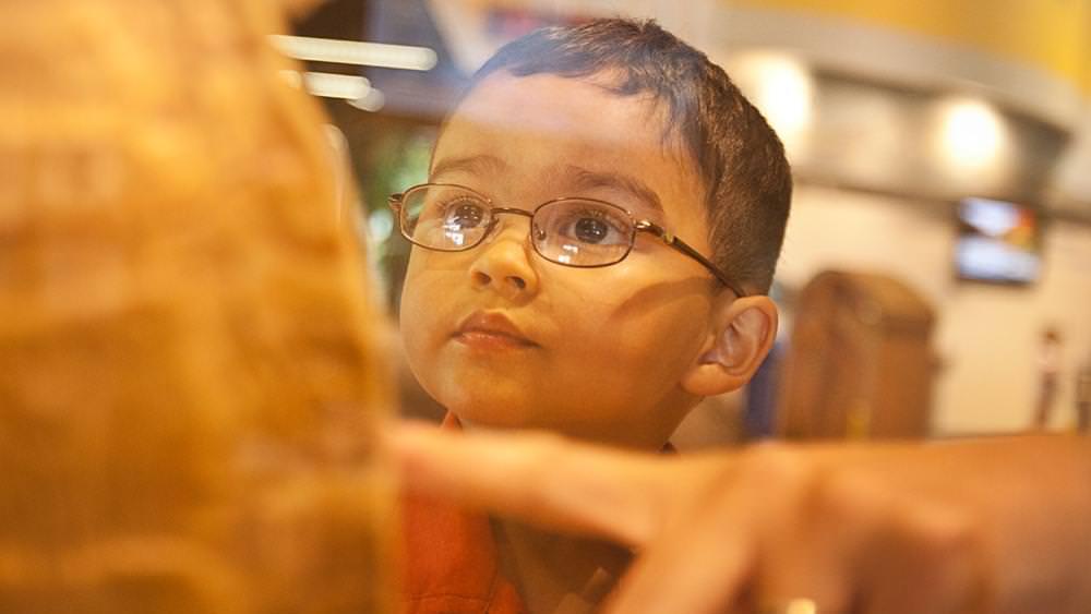 A little boy gazes at a science exhibit