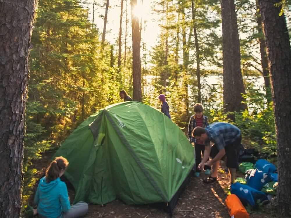 Une famille de cinq personnes dresse sa tente entre des arbres matures.