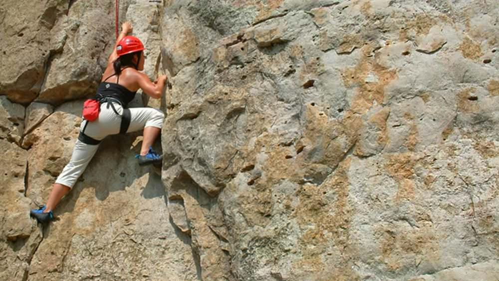 A woman attached to safety gear, rock climbing on a face of a mountain.