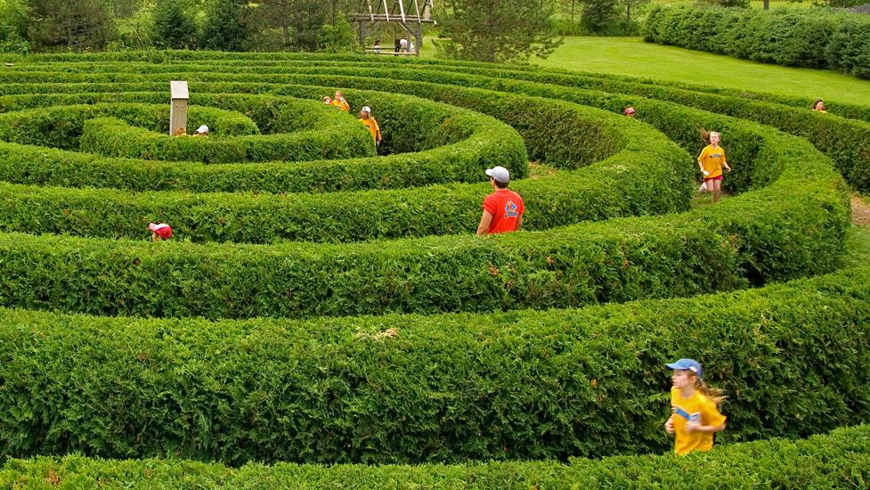 Kids play in a circular maze made out of hedges