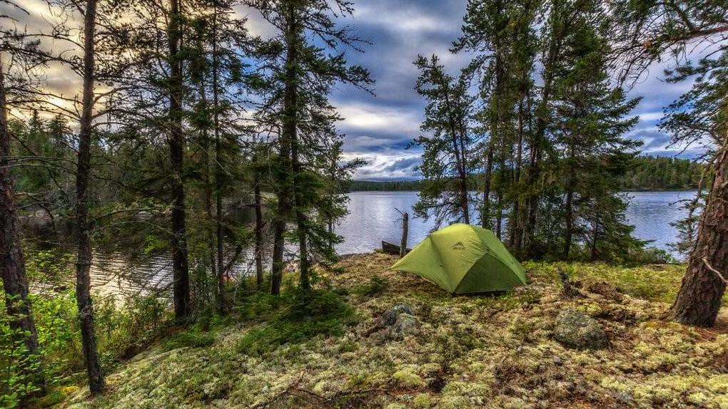 A pitched tent rests in the forest close to a lake.