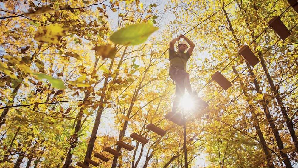 Un homme fait une promenade à la cime des arbres le long de planches en bois, qui tient une corde alors qu'il marche entre les arbres.
