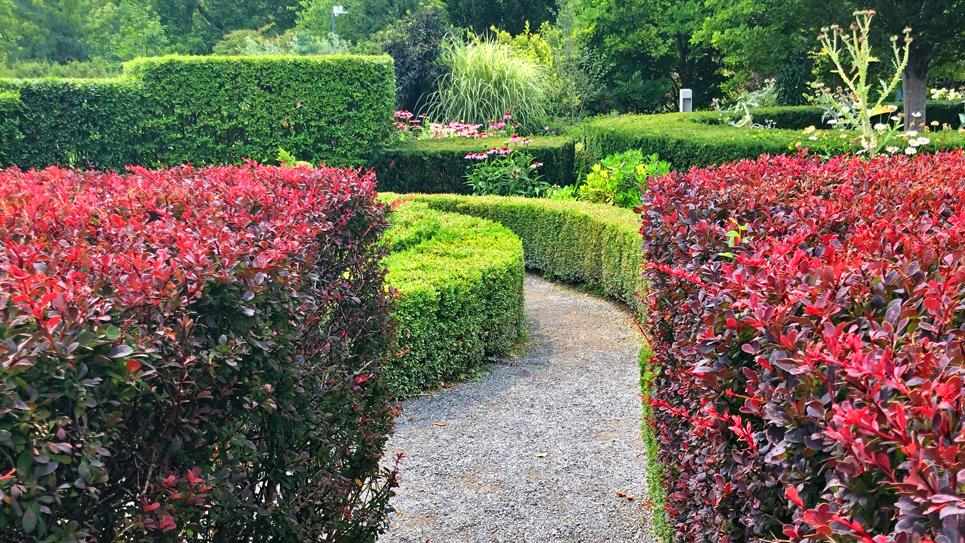 Manicured hedges and flower beds line a pathway