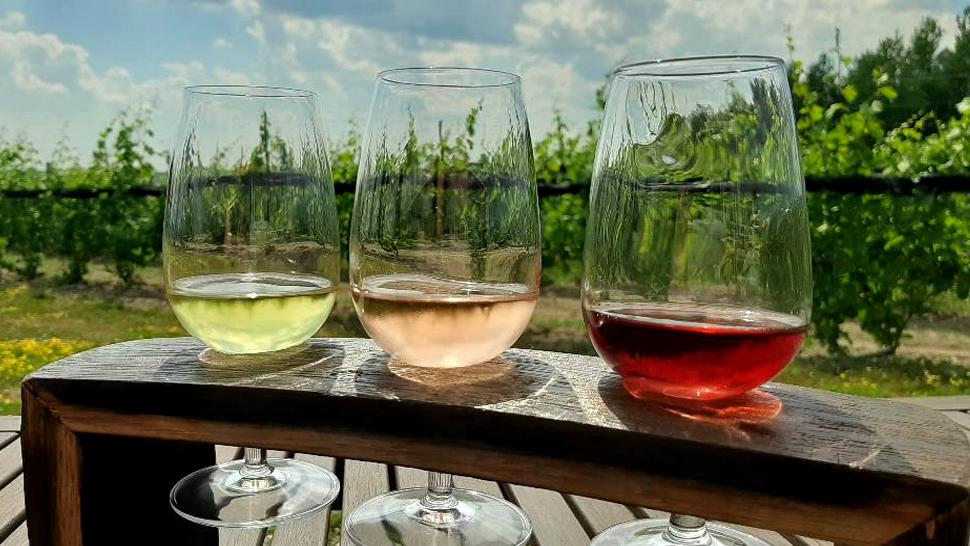 A flight of three different tasting wines on a table facing a vineyard