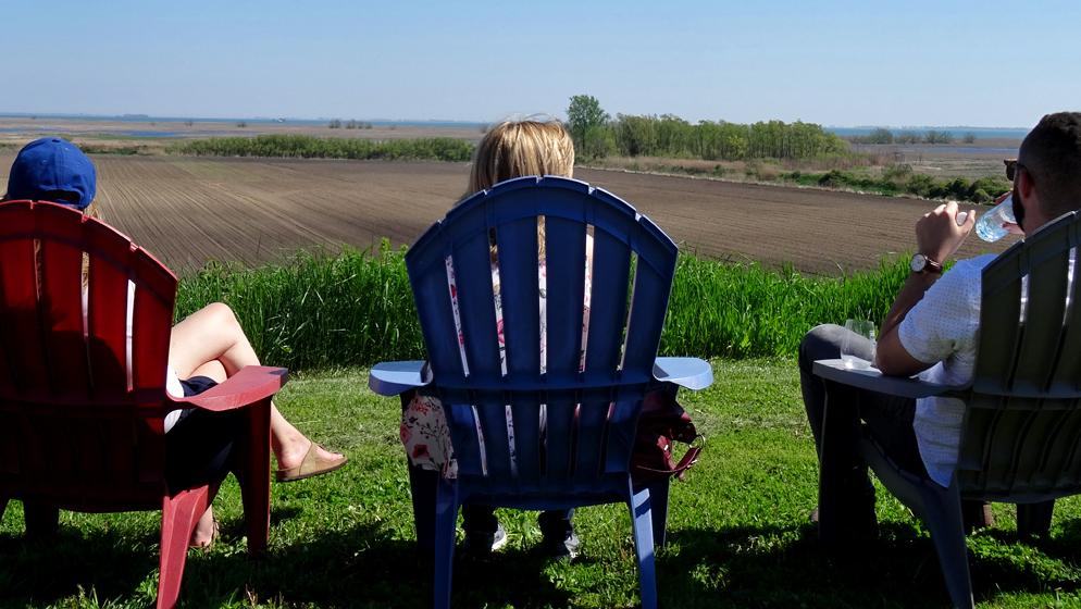 Two women and a man sit on colourful Muskoka chairs and look out over scenic farm fields