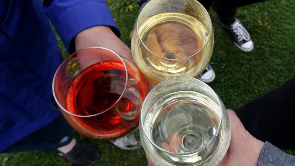 Three friends toast a wine tour sampling different types of wine