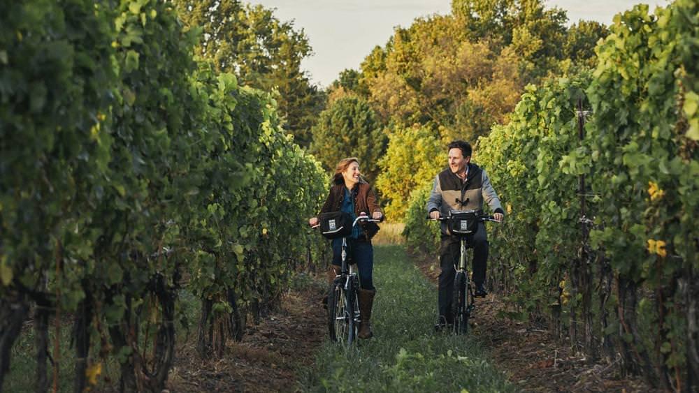 A man and woman cycle through a vineyard