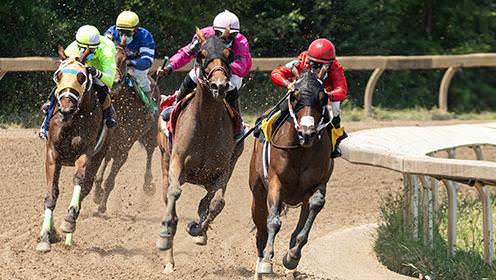 Quatre chevaux de course montés par des jockeys sur un chemin de terre. À partir de la gauche, un jockey porte du vert, l'autre du bleu, le troisème du rose et le dernier du rouge. Le jockey en rouge est légèrement en avance.