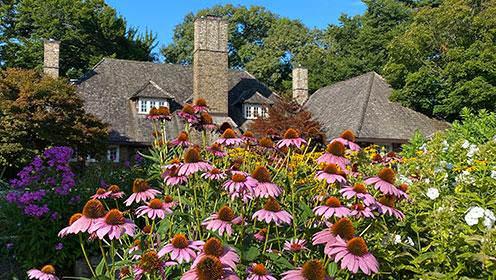 Un grand immeuble ancien avec un toit brun en pentes,  trois cheminées et de petites fenêtres blanches est entouré d'arbres. En avant-plan, des fleurs roses, violettes et jaunes, et de feuillage vert.