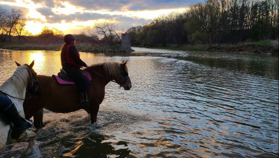 2 horses with riders crossing river towards forested bank opposite at sunrise