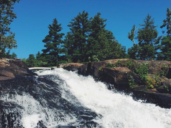 Rushing waterfalls surrounded by evergreen forest