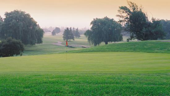Expansive golf course lawn with flag at hole in foreground and scattered trees and walkways and a bridge in background