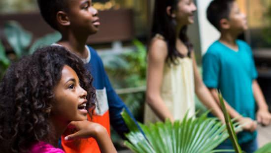 Un groupe de jeunes enfants regarde avec étonnement dans un musée