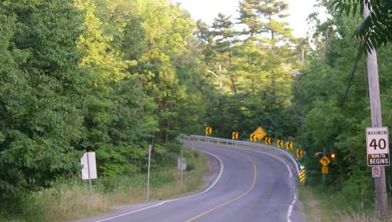 Des arbres luxuriants bordent une route sinueuse.