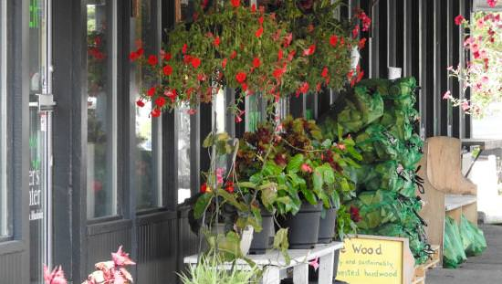 Flowers baskets adorn the outside of a boutique grocery shop
