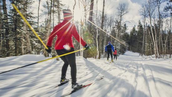 Three people crosscountry ski along a snowy trail on a sunny winter day