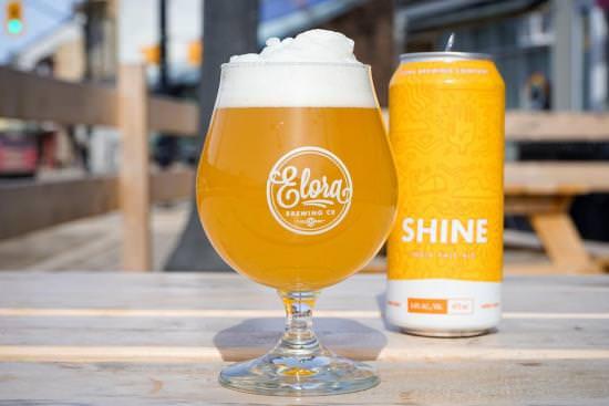 Un verre de bière rafraîchissant avec de la mousse à côté d'une canette de bière sur une table de pique-nique