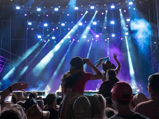 Silhouette of a crowd of fans cheering at an outdoor live concert