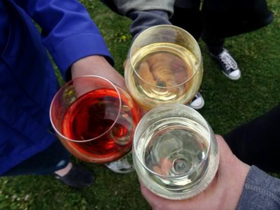 Trois amis trinquent à une visite œnologique en dégustant différents types de vins