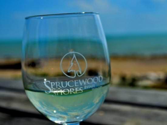 Gros plan d'un verre de vin blanc avec le lac en arrière-plan