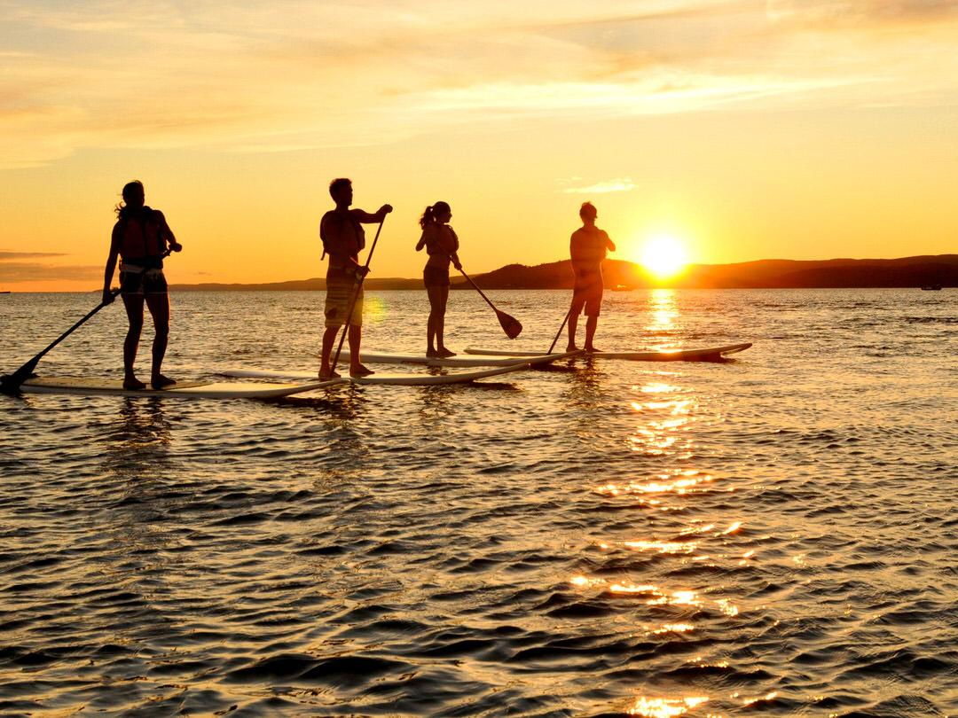 Four people enjoy stand up paddling in the sunset