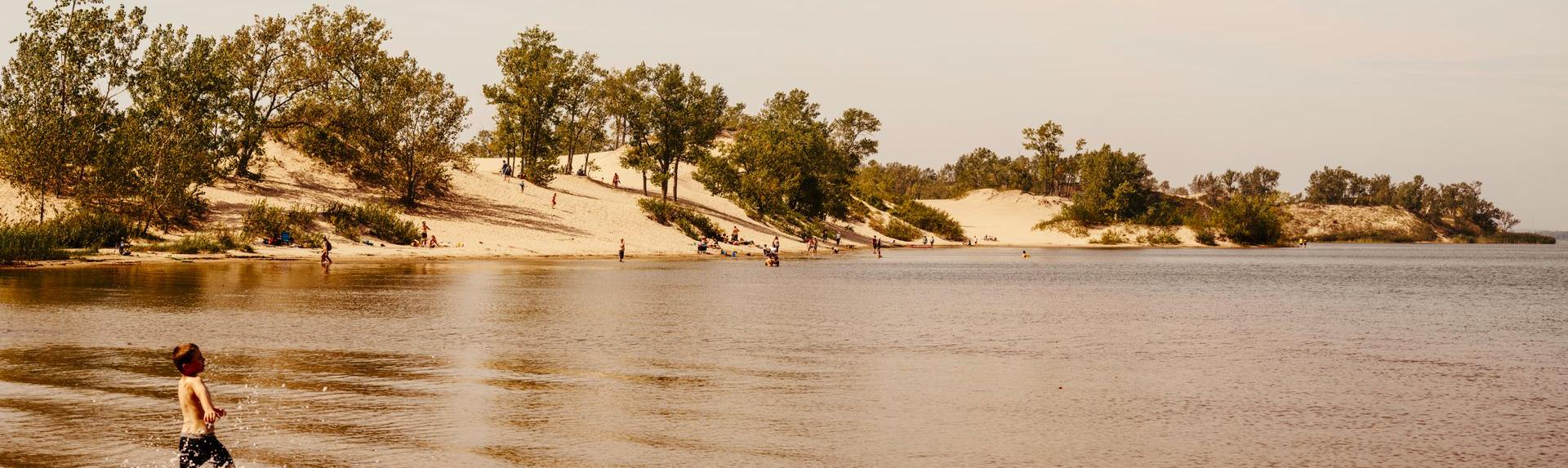 View of sand dunes from the lake at Sandbanks Provincial Park