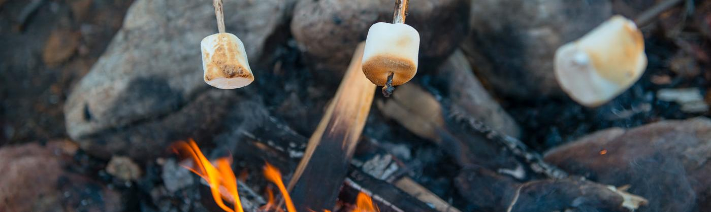 Three sticks with marshmallows on the ends rest over a campfire