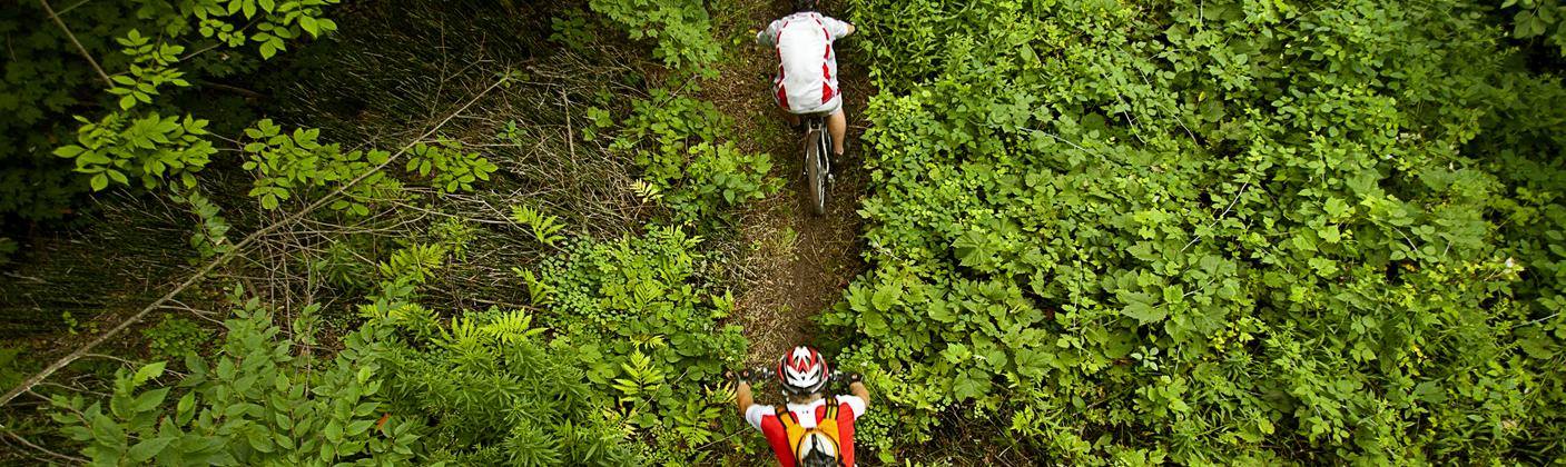 Two cyclists ride a mountain bike trail